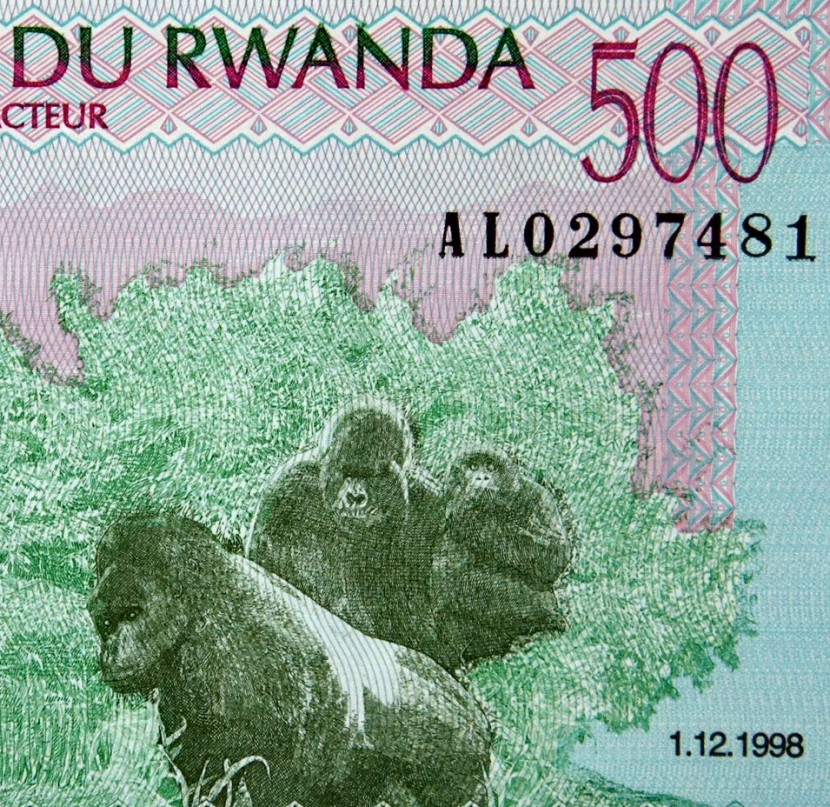 Gorilla Family on money